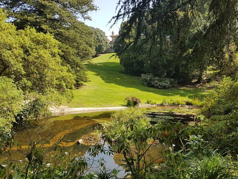 jezioro w pałacu Monserrate