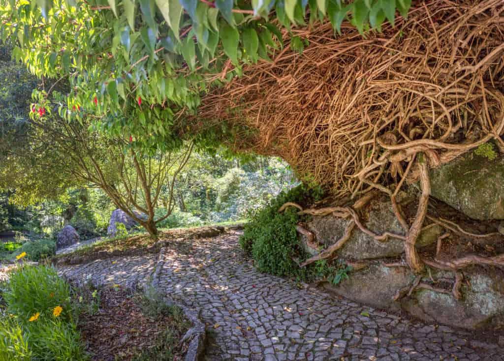 piękny park Pena w Sintrze
