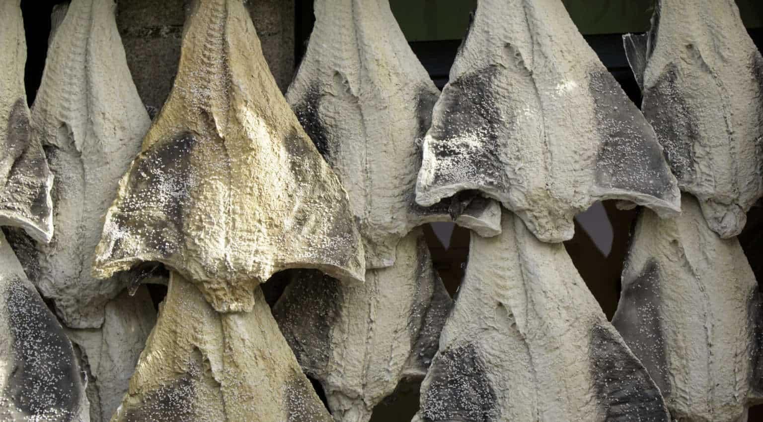 Bacalhau - portugalskie danie narodowe