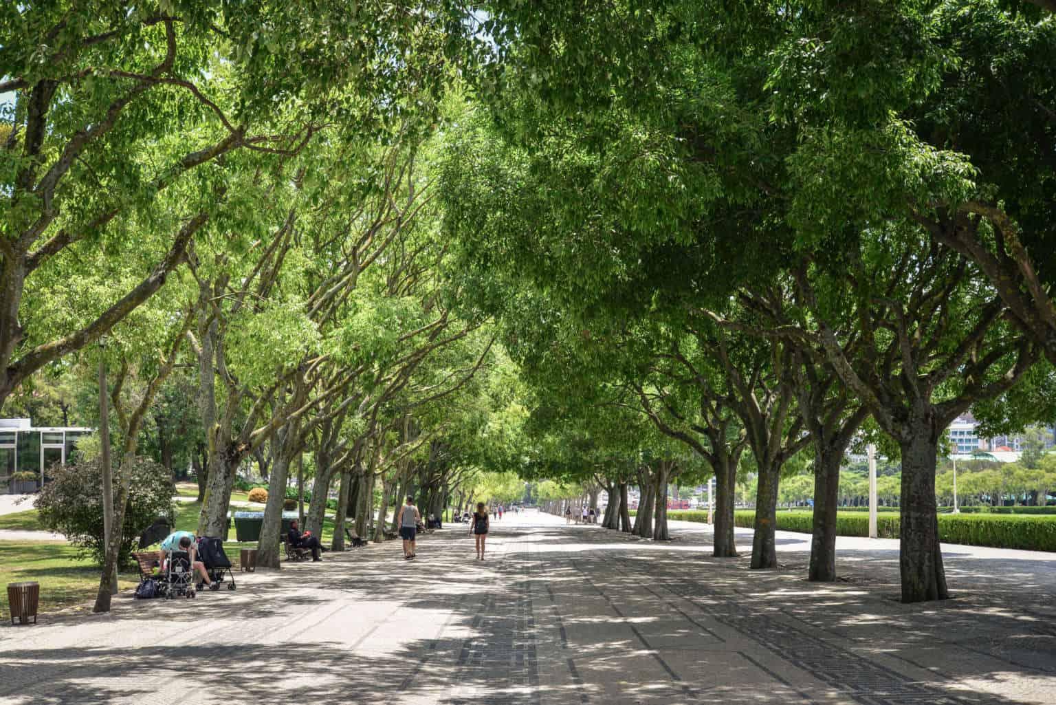 park Edwarda VII