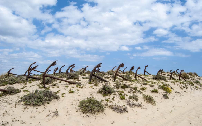 plaża Barril Tavira