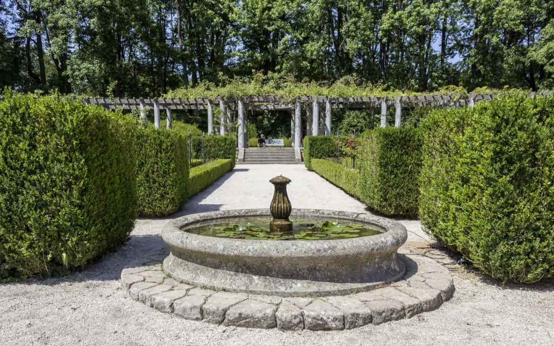 ogród w parku serralves